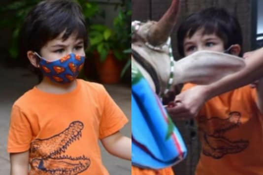 Taimur Ali Khan Gets Papped Outside His Residence, Looks Adorable as He Feeds a Cow