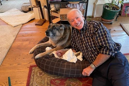 US President-elect Joe Biden and his pet dog Major. (Credit: Naomi Biden/ Twitter)