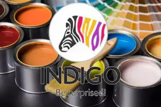 Indigo Paints (News18 Gujarat)