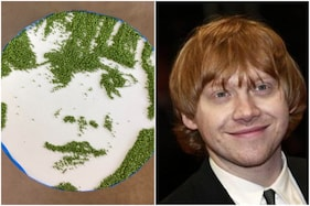 Redditors are Losing Their 'Pea'ce over This Portrait of 'Ron Weasley' Made Entirely of Peas