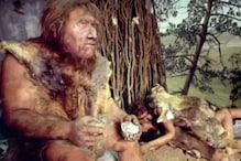 Neanderthals Were Probably Using the Same Nubian Tools as Homo Sapiens in Later Years: Study