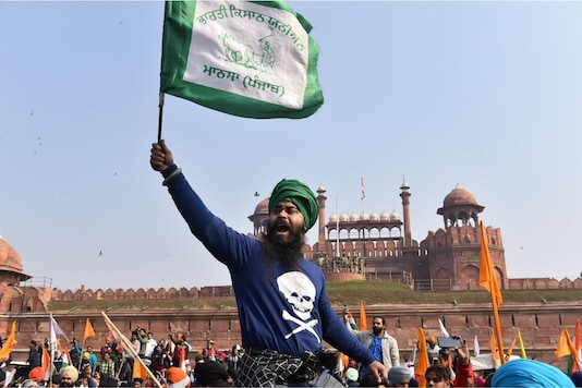 A protester raises a flag at the Red Fort. (PTI)