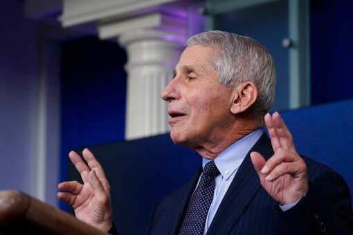 Anthony Fauci is the director of the US'  National Institute of Allergy and Infectious Diseases