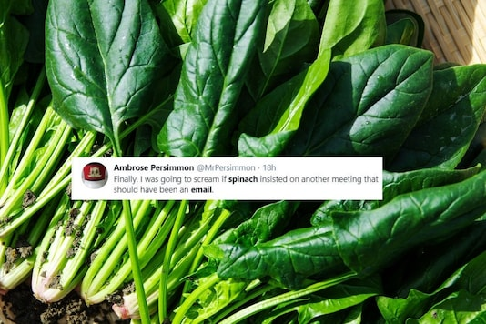Image credits: File photo of spinach/Twitter.