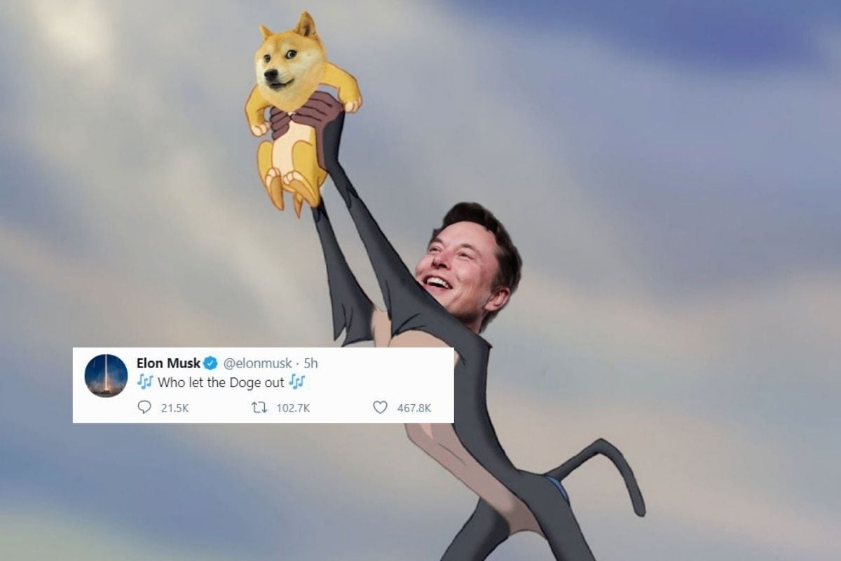 Elon Musk's Obsession With Dogecoin Has Skyrocketed Cryptocurrency Market  Price, Memes