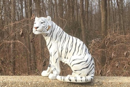 The White Tiger figurine spotted on highway.