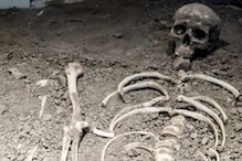 Skeleton Dating Back to 4.4 Million Years Ago Gives New Insights into Human's Locomotive Evolution