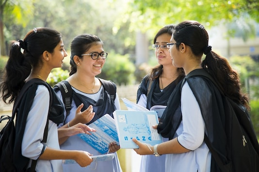 Under the Education Mentoring Programme, each IGDTUW mentor will guide five girls studying in grades 9 to 12 (Image by Shutterstock/ Representational)
