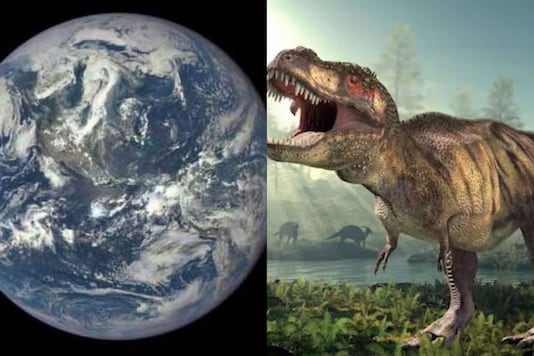 Tom Meyer said said there are several substantiative pieces of evidence that show humans walked alongside dinosaurs around 6,000 years ago.