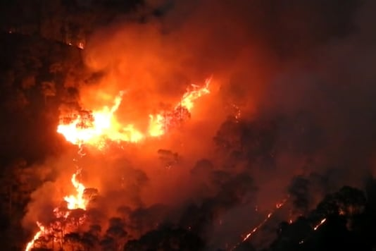 Flames engulfed a forest near Nanital on Friday.