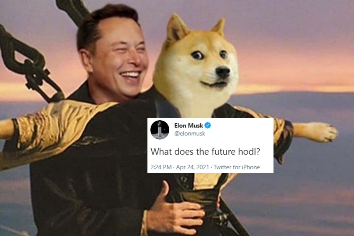 Elon Musk Made a 'Typo' and Twitter Wants You to 'Hodl ...