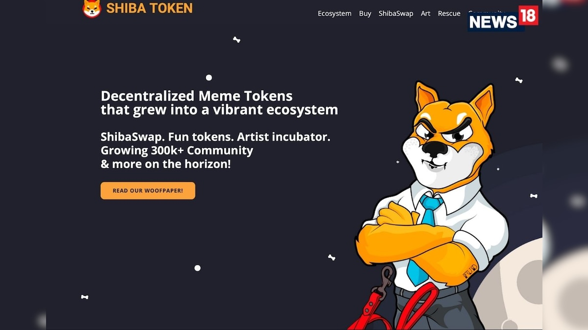 Shiba Inu Crypto Coin Is It Really The Dogecoin Killer Or Just Another Meme Coin And A Hustle
