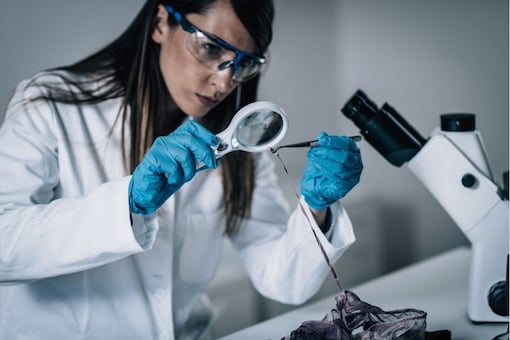 Forensic Science (Image: Shutterstock)