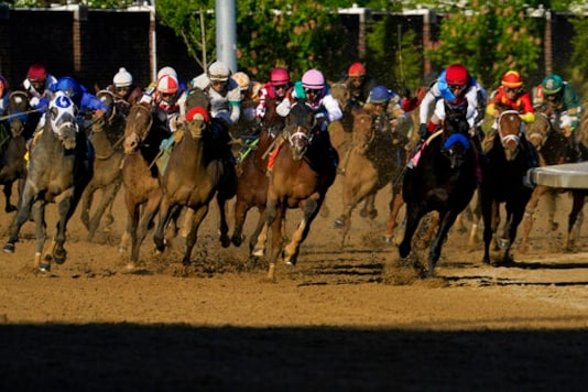 Kentucky Derby, NFL Draft Pull In Television Viewers