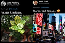 Amazon Rainforest to Tower of Pisa, Desis 'Misplace' Iconic Spots Around the World in Viral Twitter Thread
