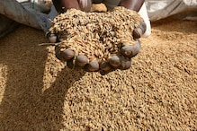 World Food Price Index Surges in May to Highest Level Since 2011: UN Food Agency