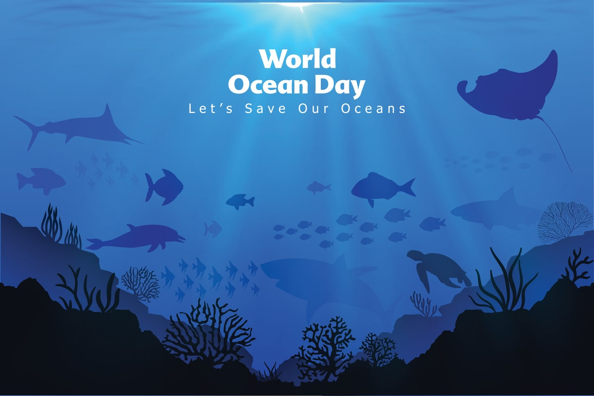 World Oceans Day 2021: Important Facts about Oceans You Need To Know thumbnail