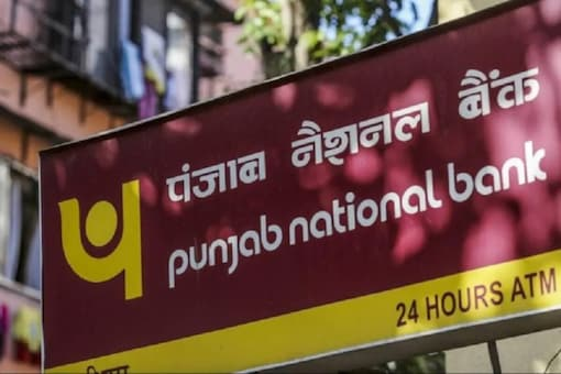 PNB To Auction Houses, Agricultural Land On June 15