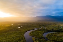 World Rainforest Day 2021: From Amazon to Atlantic, a look at Rainforests Around the World