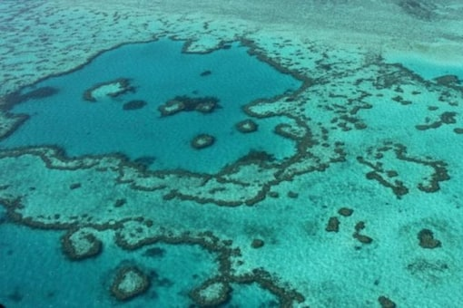 Aerial view of the Great Barrier Reef (AFP)