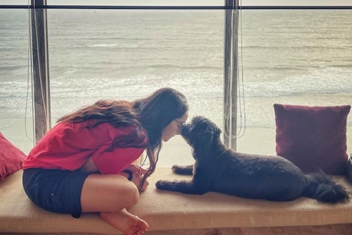 Shraddha Kapoor's Fans Can't Get Enough of Breathtaking View from Actor's Seaside Home, See Pic