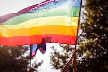 Who Designed the 'Rainbow Flag' and How Did it Come to Represent Queer Pride?