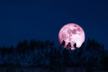 From Vat Purnima to Strawberry Moon: Here's What the June Full Moon is called Across the World