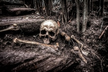 Dark Tourism: Why are Travellers Attracted to Sites of Death and Disaster?