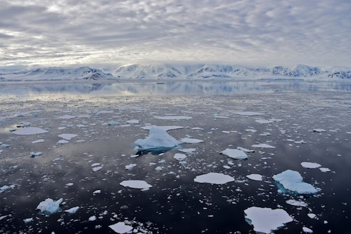 This file photo taken on November 27, 2019 shows a view of the glacier at Chiriguano Bay in South Shetland Islands, Antarctica. (AFP)