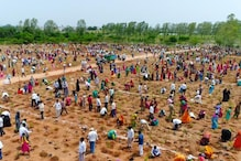 Telangana Sets New World Record by Planting 1 Million Sapling In an Hour