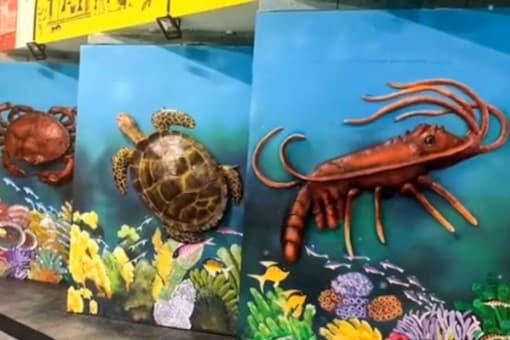 Video grab of the aquatic kingdom.  (Credit: Instagram)