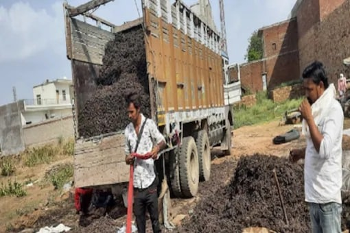 Illegal Herb Smuggling Racket Busted In MP's Sheopur