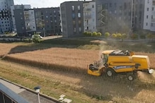 Polish Farmer Cultivates Land Surrounded By Buildings, Refuses Offers From Builders