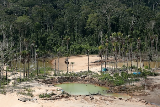 An aerial view shows a deforested area of the Amazon jungle in southeast Peru caused by illegal mining.   REUTERS/Guadalupe Pardo/Pool