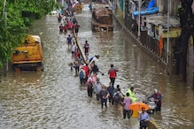 Mumbai Rains LIVE Updates: IMD Issues Alert for Intense Rains as Clouds Hover Over Thane, Raigad; No Disruption in Local Train Services