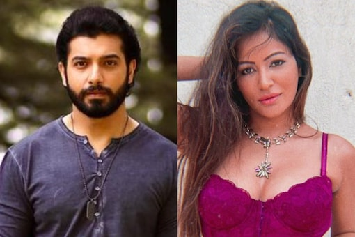 After dating for over two years, Sharad Malhotra and Pooja Bisht parted ways in 2018.