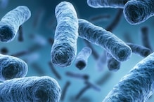 New Tech Offers Treatment Against Drug-Resistant Bacteria in Under A Week's Time