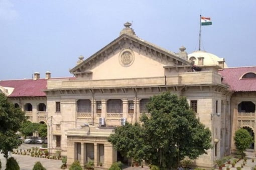 A judge in the Allahabad HC said that cows should be made the national animal (File photo: ANI)