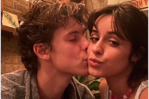 Camila Cabello and Shawn Mendes had helped raise funds during India's Covid second wave.