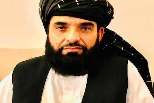 Taliban Mohammad Suhail Shaheen said women covering their hands with gloves was their 'choice'. (Image:News18)