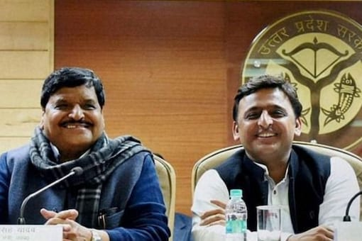 Shivpal Yadav and Akhilesh Yadav (PTI File)