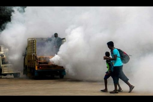 MP govt is set to launch a campaign to curb the spread of dengue. (PTI file photo)