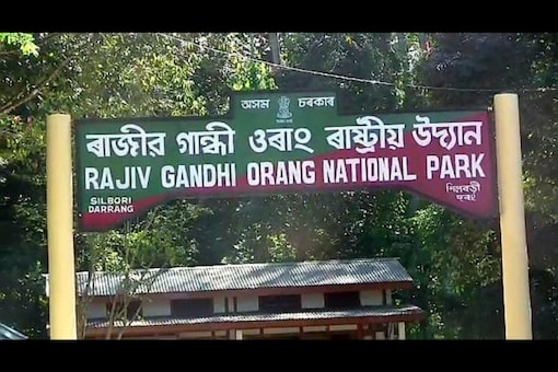 Located on the north bank of the Brahmaputra River in the Darrang and Sonitpur districts of Assam, the Rajiv Gandhi Orang National Park covers an area of 78.80 sq km. (News18)