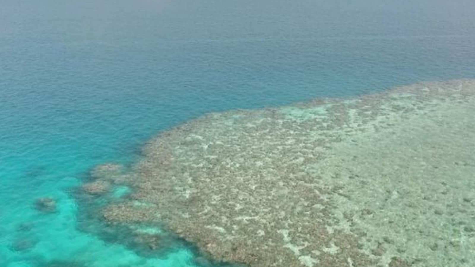Fluffy Little Clouds May Be Best Bet to Save Australia's Great Barrier Reef