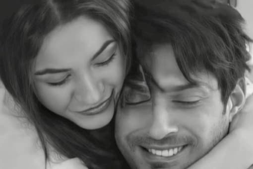 Sidharth Shukla and Shehnaaz Gill were rumoured to be in a relationship.
