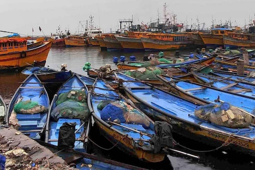 Boats being parked on the fish harbour as Indian Meteorological Department has restricted venturing in the sea due to cyclone 'Gulab' in Visakhapatnam. (PTI Photo)