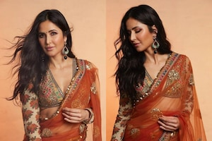 Katrina Kaif Oozes Hotness In Netted Saree, Check Out Diva Ace Traditional Outfits