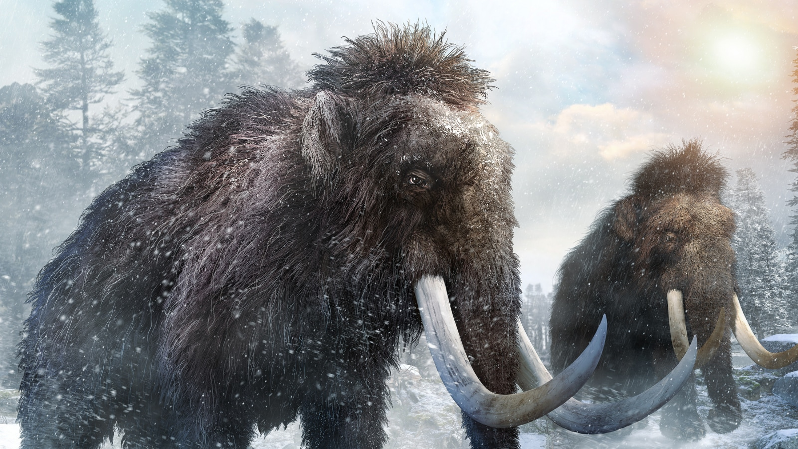 Mammoths Went Extinct Much Later Than Scientists Previously Thought: Study
