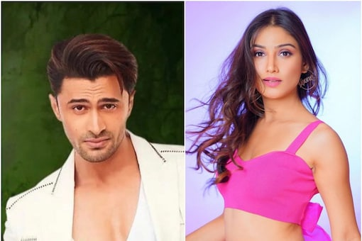 Bigg Boss 15 Day 1 Highlights: Ieshaan is First Nominated Contestant, Donal Termed Manipulative