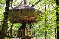 How badly do you want to live in one? Spectacular treehouses around the world